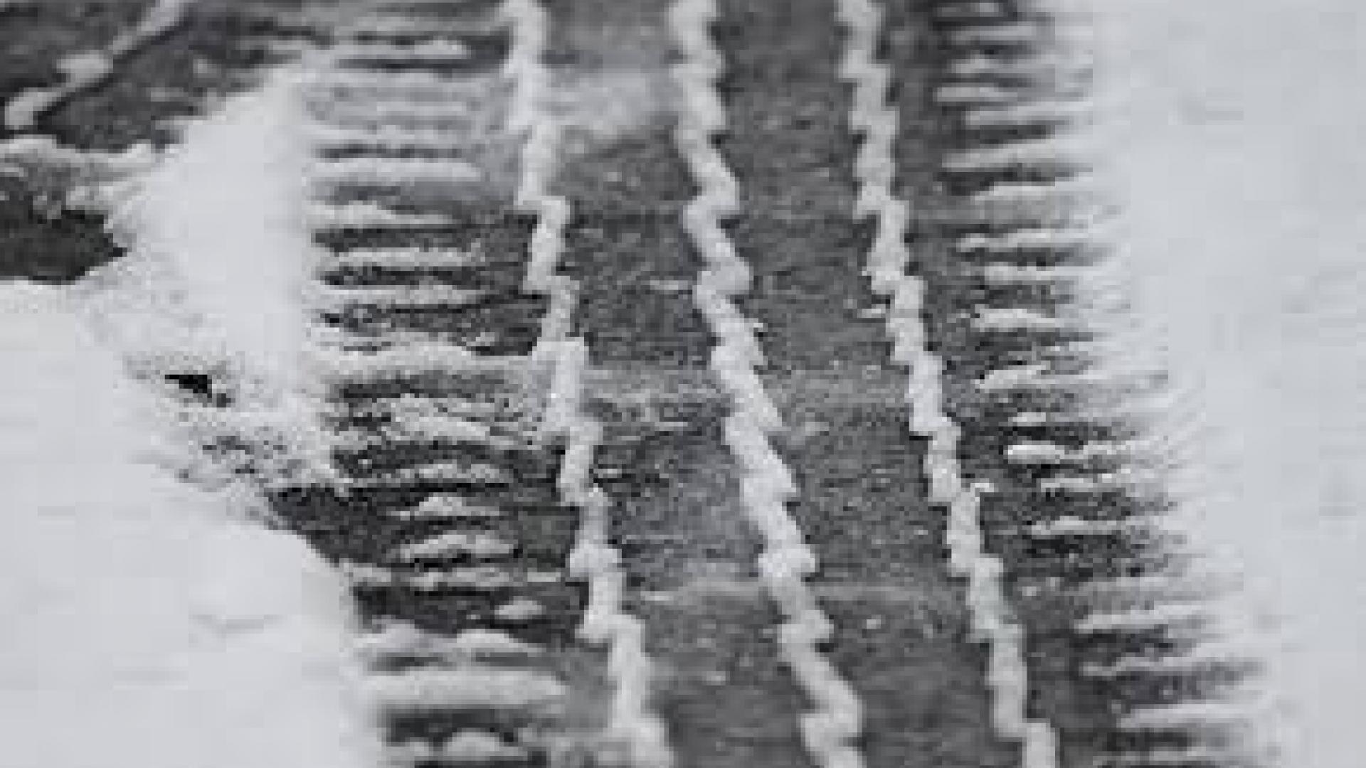 Сняг затвори за кратко пътищата от Русе към София и Шумен