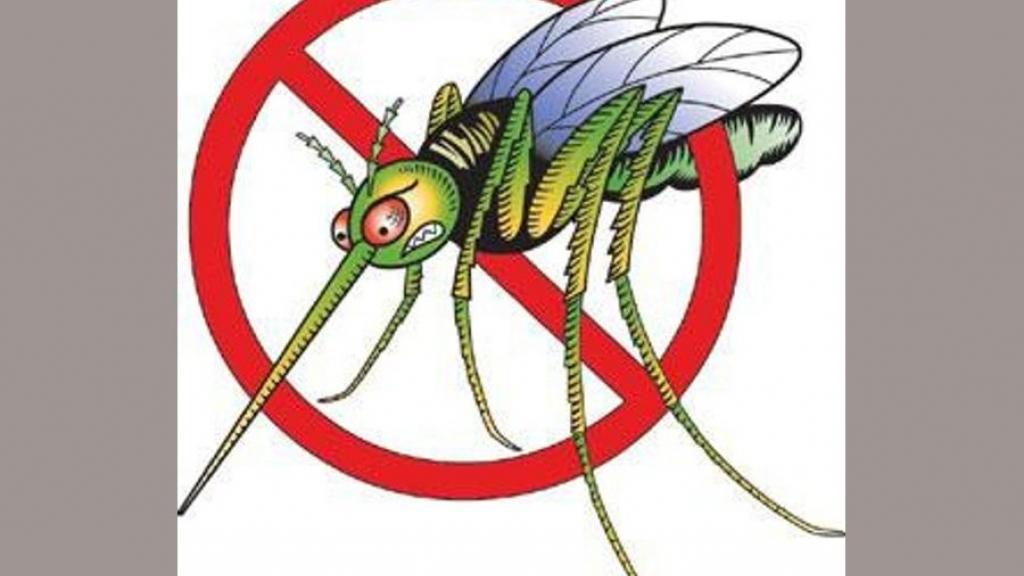 Пръскат срещу комари в Русе и Гюргево