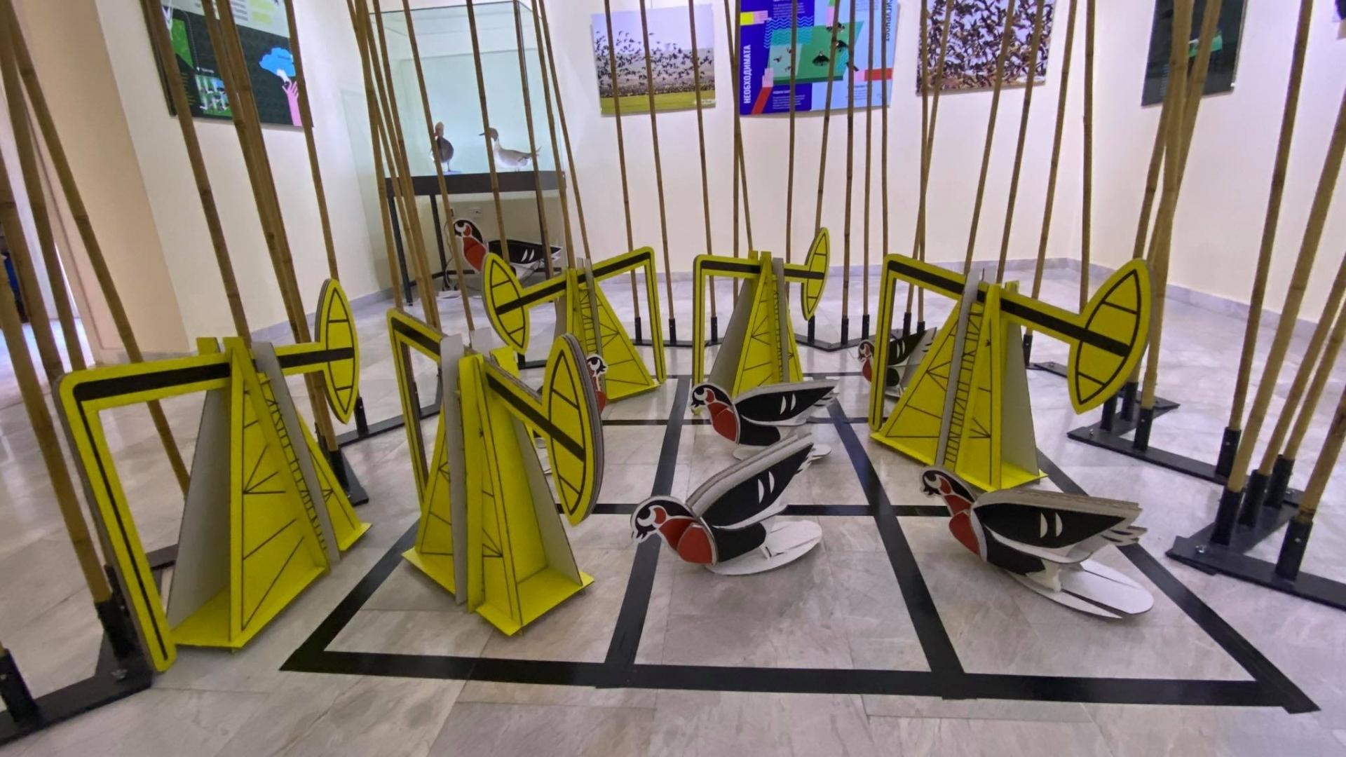 Екомузеят с интерактивна изложба за червеногушата гъска