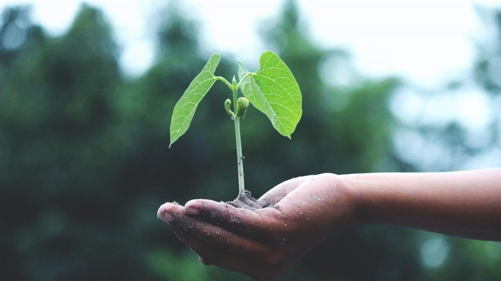 Покана за  Иновационни форуми и бизнес срещи сектор храни и селско стопанство