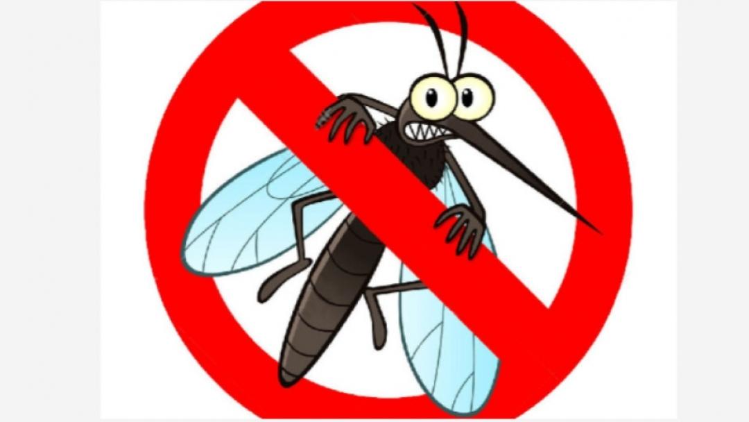 Вторник отново ще пръскат срещу комари в Русе и околностите му